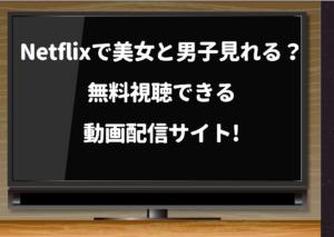 netflix,美女と男子,配信,pandora,dailymotion,見逃し,NHK
